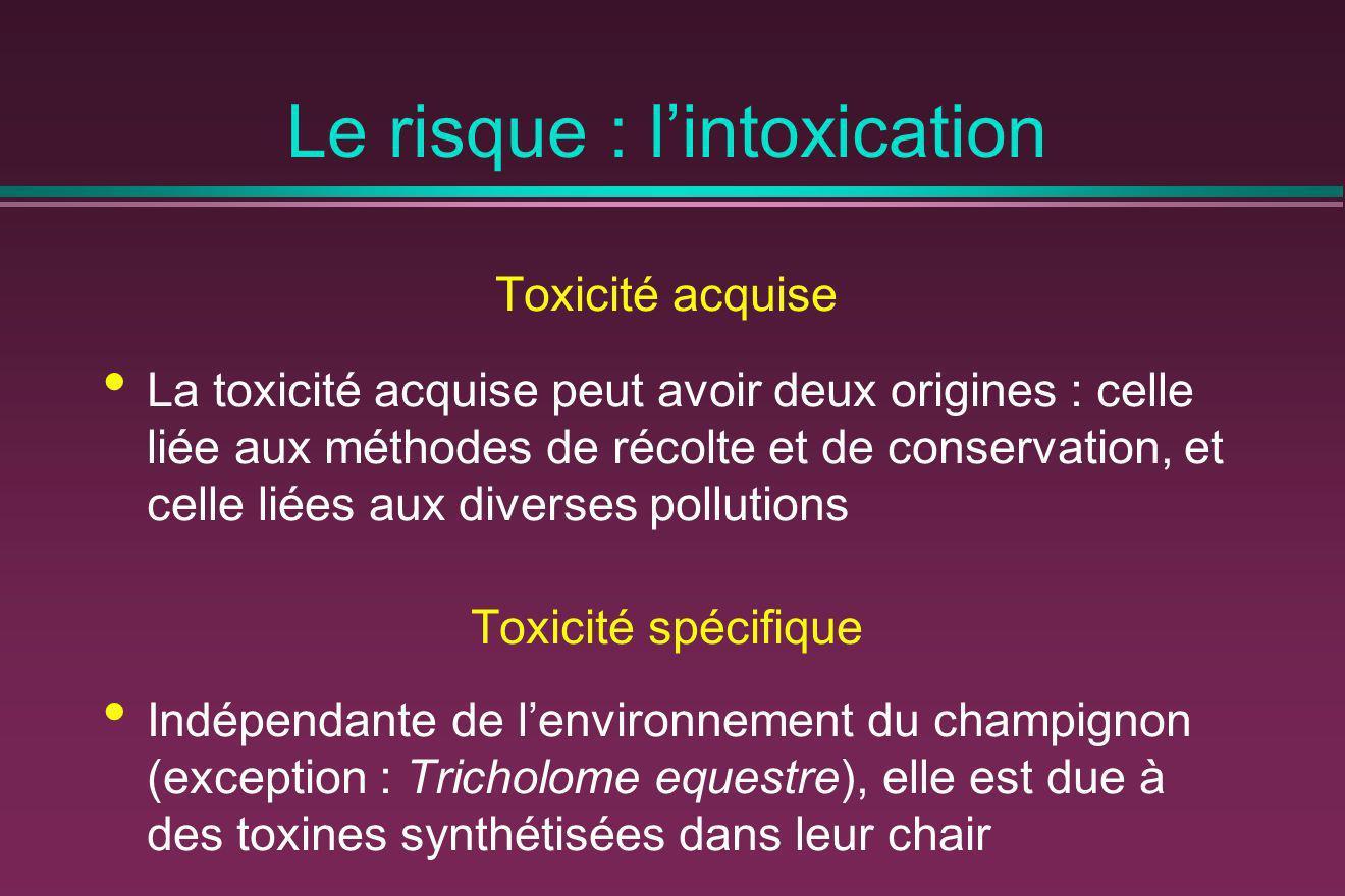 Le risque : lintoxication Toxicité acquise La toxicité acquise peut avoir deux origines : celle liée aux méthodes de récolte et de conservation, et ce
