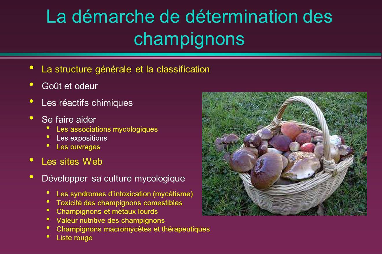La démarche de détermination des champignons La structure générale et la classification Goût et odeur Les réactifs chimiques Se faire aider Les associ
