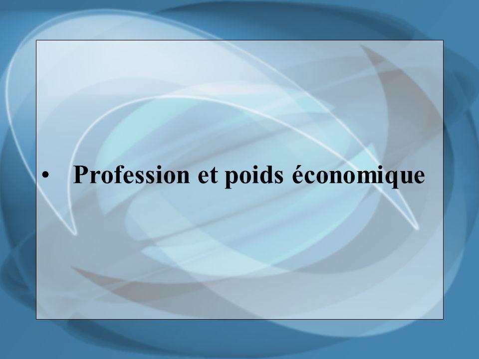 Profession et poids économique