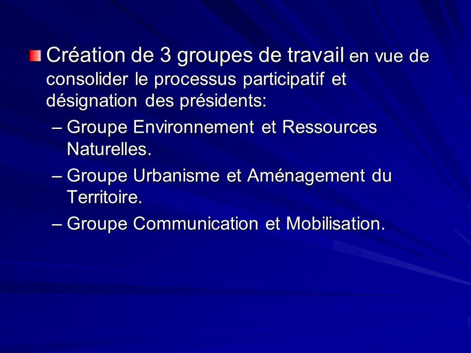 Création de 3 groupes de travail en vue de consolider le processus participatif et désignation des présidents: –Groupe Environnement et Ressources Nat