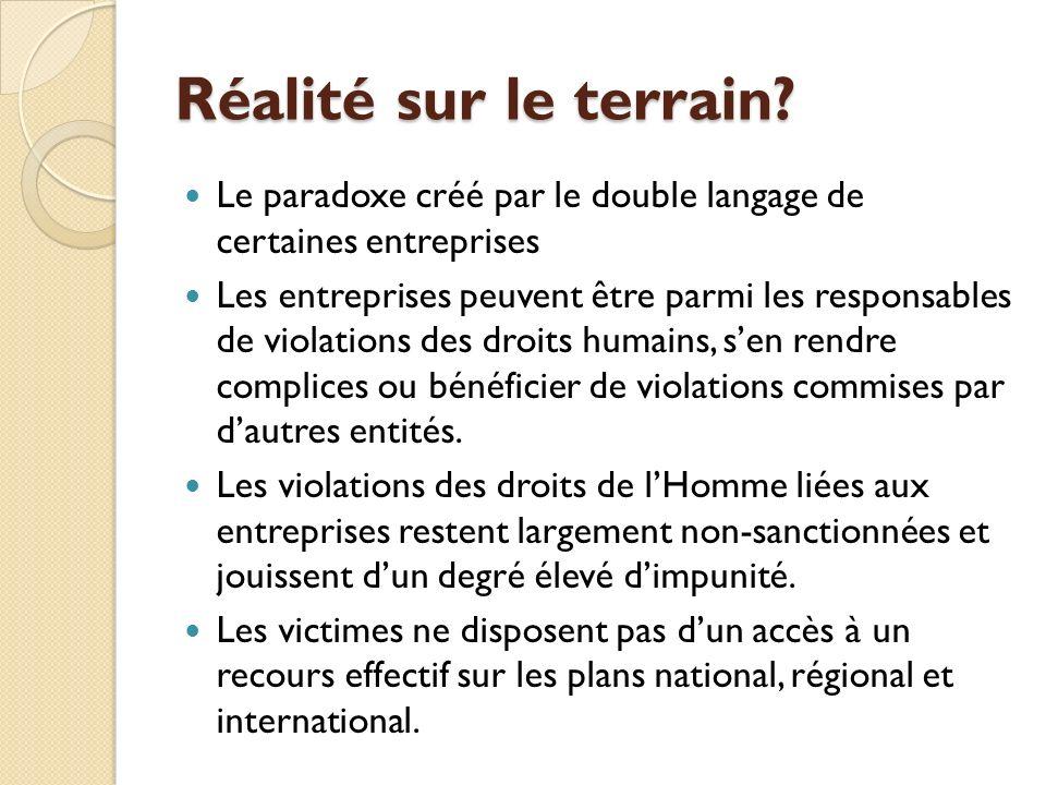 Exemples de Normes/Principes internationaux Codes de Conduite volontaires UN Global Compact - Pacte Mondial Conditions de travail recommandées par le Bureau international du Travail (BIT) Principes pour lInvestissement Responsable (PRI), LOrganisation internationale pour la normalisation (ISO) Les directives OECD pour les Entreprises Multinationales Norme Responsabilité Sociale 8000 (SA 8000) Directives volontaires sur la Sécurité et droit de lHomme Les Principes de lEquateur Normes des Nations Unies pour les Corporations transnationales.