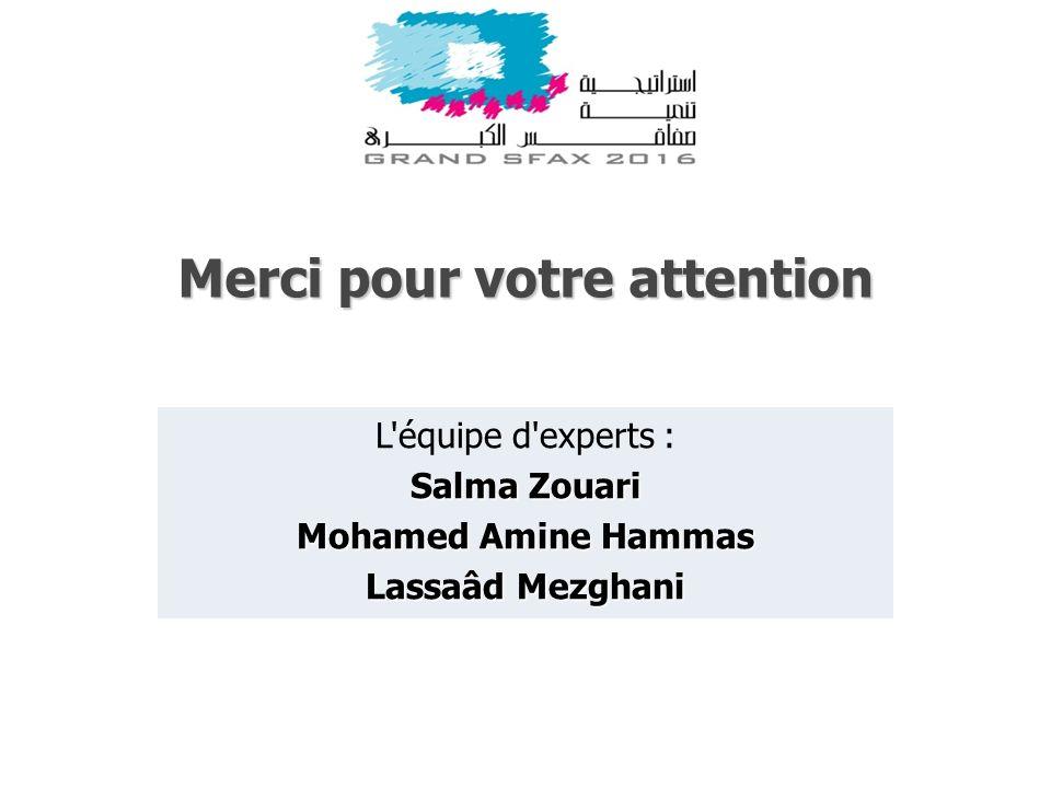 Merci pour votre attention L'équipe d'experts : Salma Zouari Mohamed Amine Hammas Lassaâd Mezghani