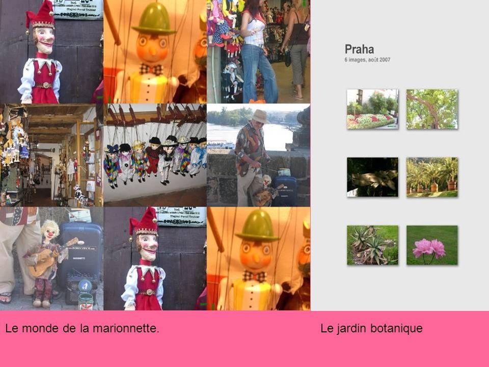 Le monde de la marionnette. Le jardin botanique