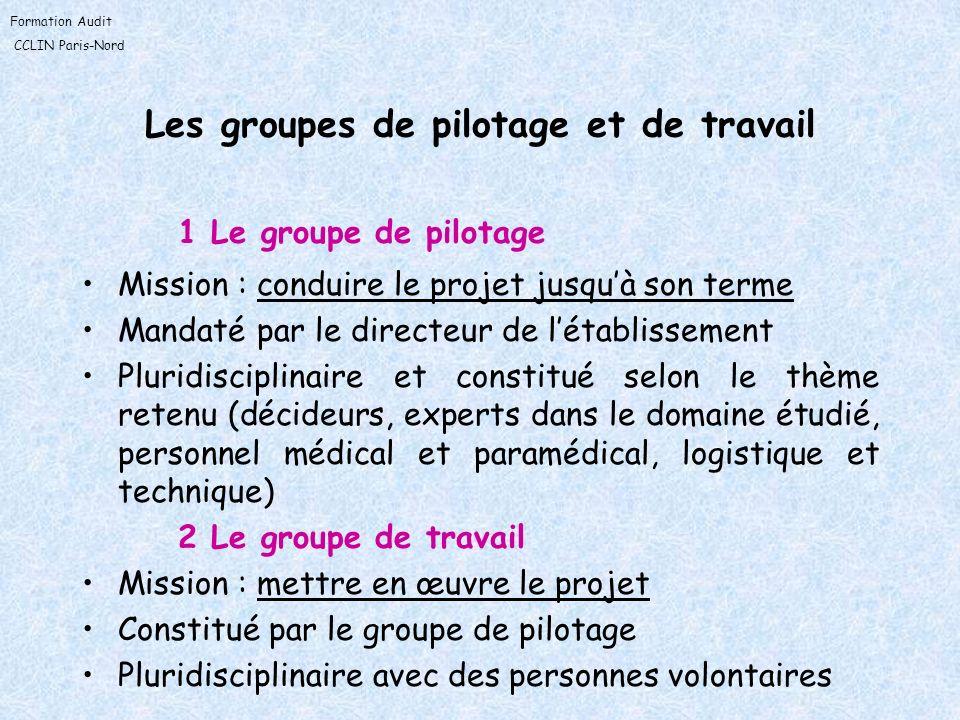 Formation Audit CCLIN Paris-Nord Les groupes de pilotage et de travail 1 Le groupe de pilotage Mission : conduire le projet jusquà son terme Mandaté p