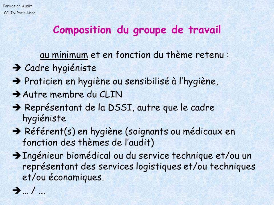 Formation Audit CCLIN Paris-Nord Composition du groupe de travail au minimum et en fonction du thème retenu : Cadre hygiéniste Praticien en hygiène ou