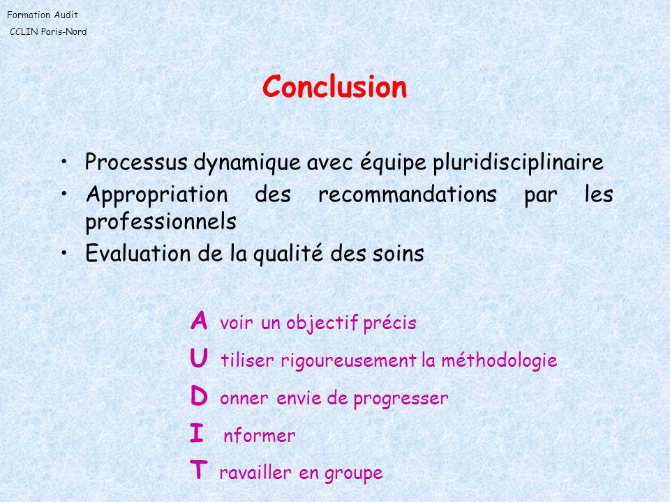 Formation Audit CCLIN Paris-Nord Conclusion Processus dynamique avec équipe pluridisciplinaire Appropriation des recommandations par les professionnel
