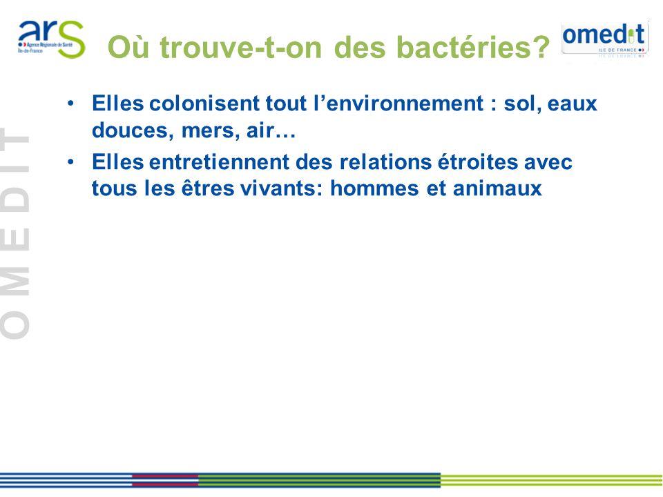 O M E D I T Les bactéries : définition Les bactéries : organismes microscopiques qui peuvent survivre de façon indépendante, se nourrir et se multiplier.