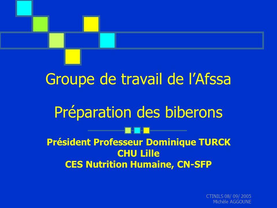 CTINILS 08/ 09/ 2005 Michèle AGGOUNE Groupe de travail de lAfssa Préparation des biberons Président Professeur Dominique TURCK CHU Lille CES Nutrition