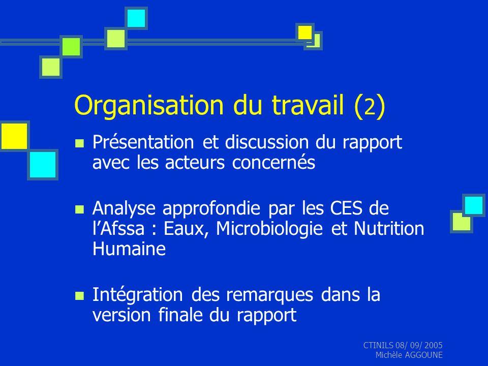 CTINILS 08/ 09/ 2005 Michèle AGGOUNE Organisation du travail ( 2 ) Présentation et discussion du rapport avec les acteurs concernés Analyse approfondi