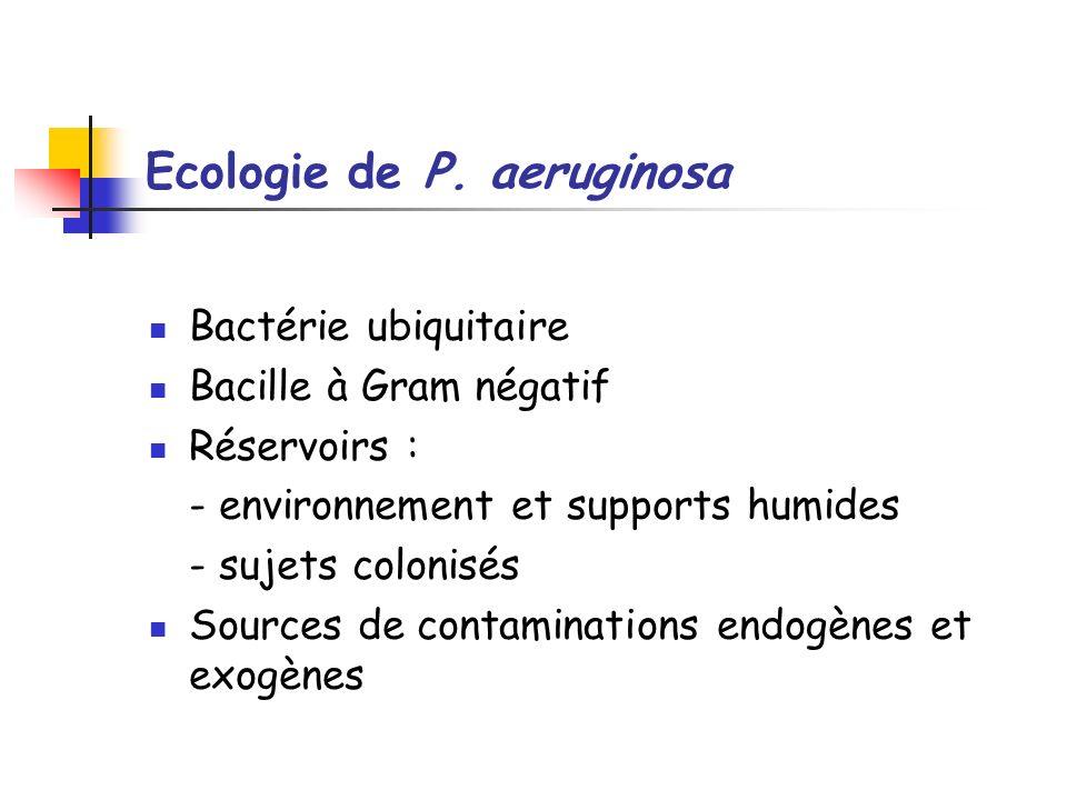 Ecologie de P. aeruginosa Bactérie ubiquitaire Bacille à Gram négatif Réservoirs : - environnement et supports humides - sujets colonisés Sources de c