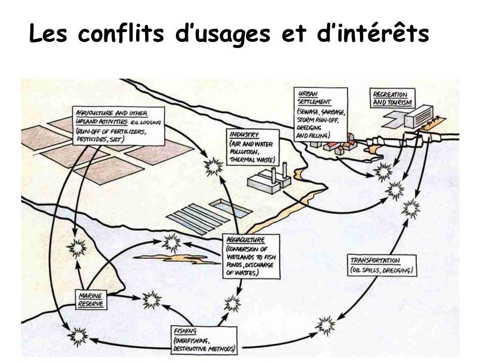 Proposition de Réalisation du CAMP Lève d Almeria Le MMA (Ministère de l Environnement étatique) propose à la CMA (Ministère régional) la réalisation d un projet de Gestion de Zones Côtières en septembre 2004.