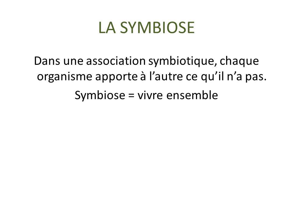 LA SYMBIOSE Dans une association symbiotique, chaque organisme apporte à lautre ce quil na pas.