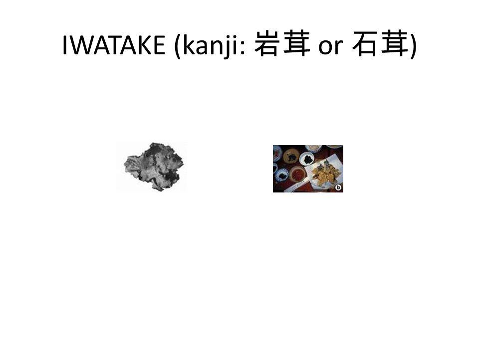 IWATAKE (kanji: or )