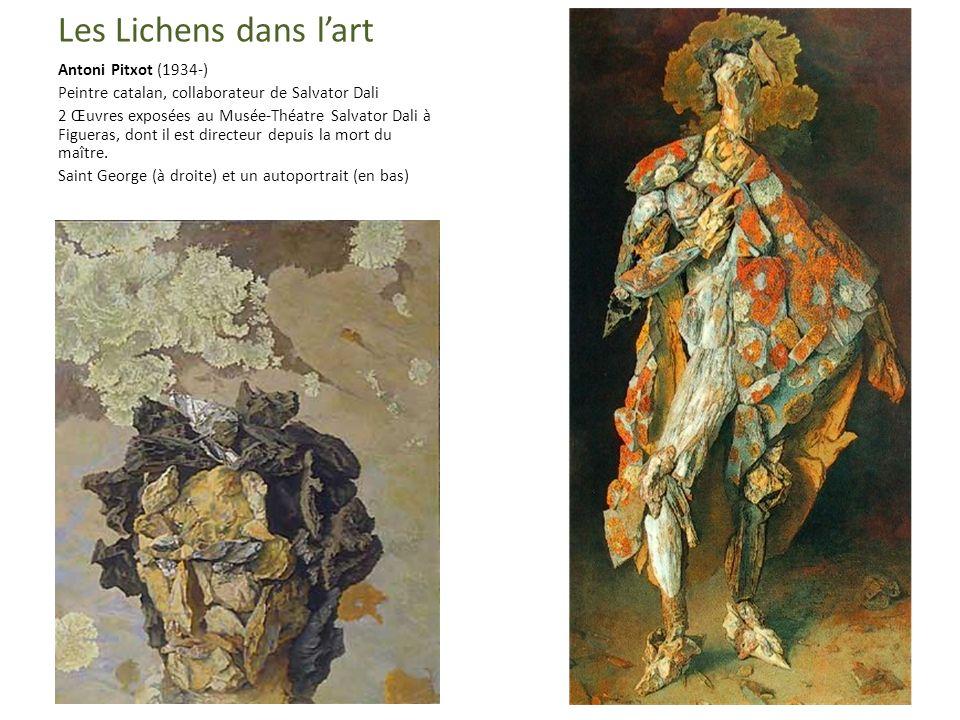 Les Lichens dans lart Antoni Pitxot (1934-) Peintre catalan, collaborateur de Salvator Dali 2 Œuvres exposées au Musée-Théatre Salvator Dali à Figueras, dont il est directeur depuis la mort du maître.