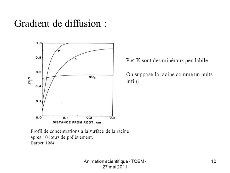 10 Gradient de diffusion : Profil de concentrations à la surface de la racine après 10 jours de prélèvement. Barber, 1984 Animation scientifique - TCE