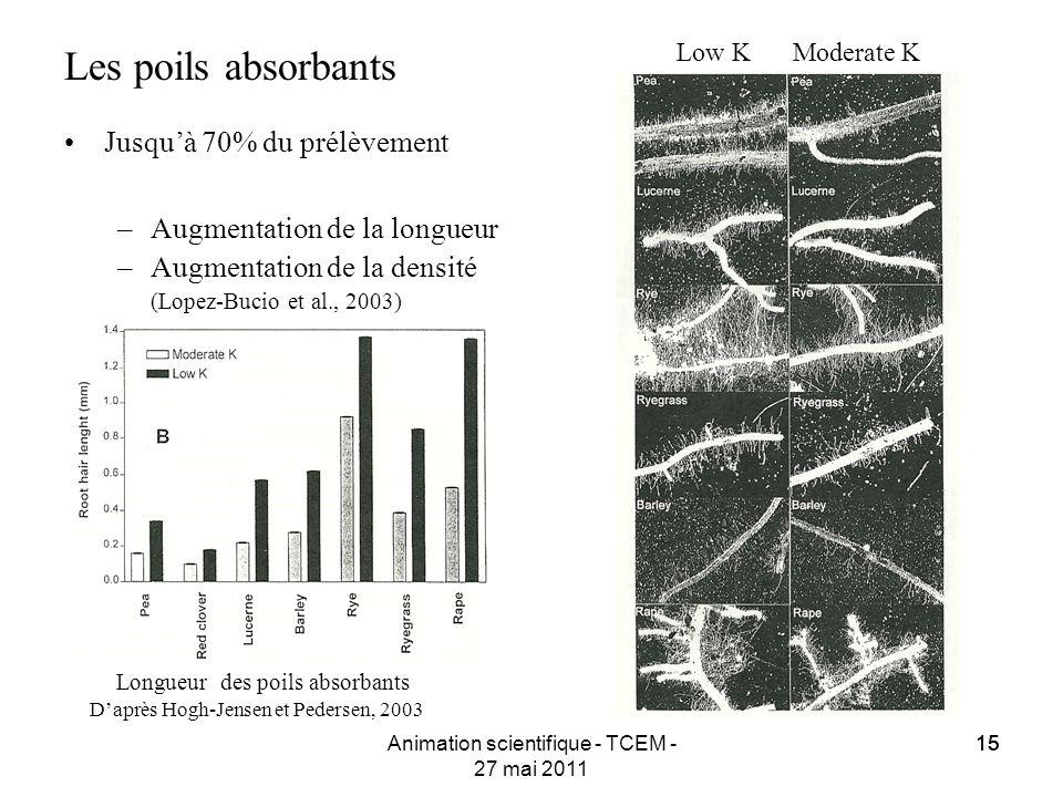 15 Animation scientifique - TCEM - 27 mai 2011 15 Les poils absorbants Jusquà 70% du prélèvement –Augmentation de la longueur –Augmentation de la dens