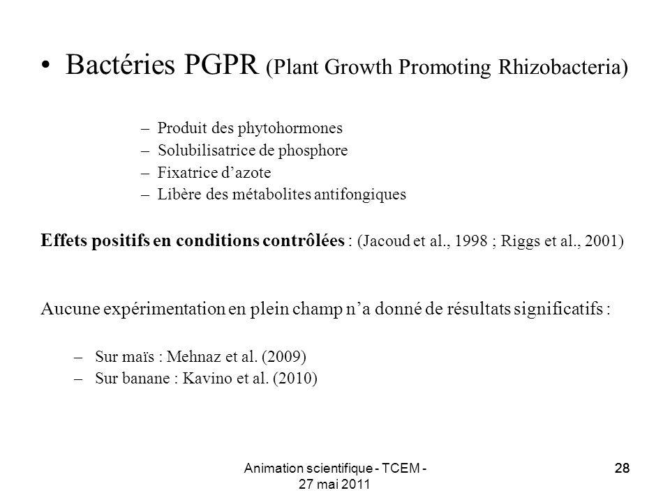 28 Animation scientifique - TCEM - 27 mai 2011 28 Bactéries PGPR (Plant Growth Promoting Rhizobacteria) –Produit des phytohormones –Solubilisatrice de