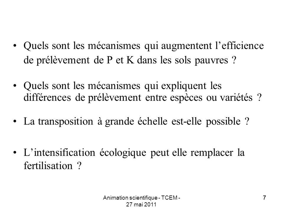 77Animation scientifique - TCEM - 27 mai 2011 7 Quels sont les mécanismes qui augmentent lefficience de prélèvement de P et K dans les sols pauvres ?