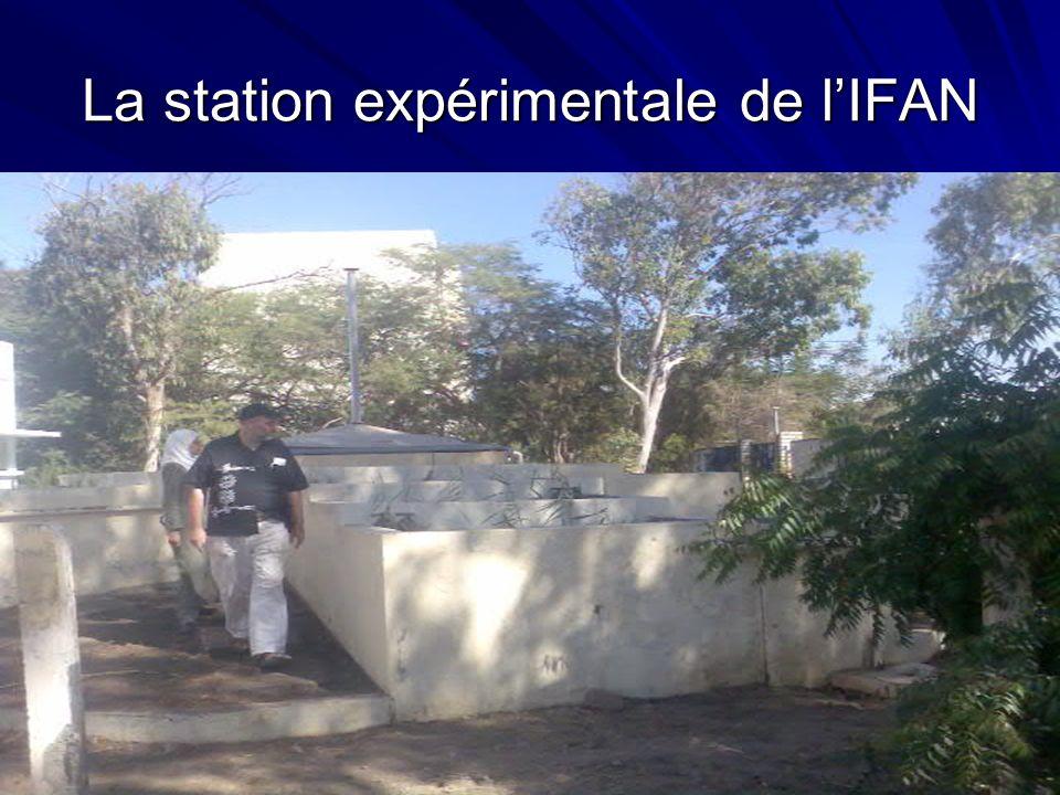 La station expérimentale de lIFAN