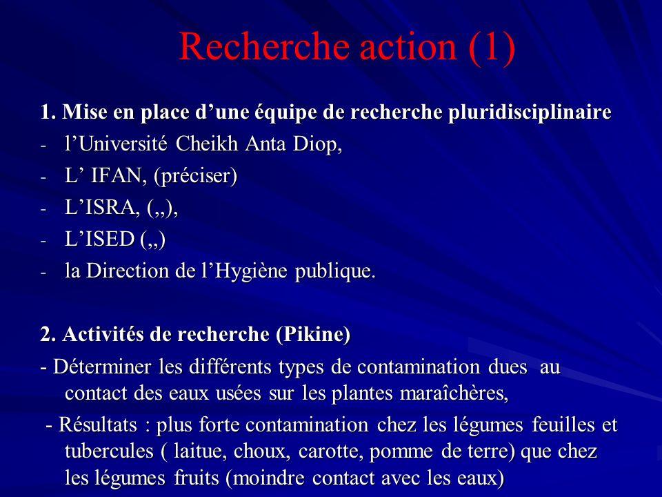 1. Mise en place dune équipe de recherche pluridisciplinaire - lUniversité Cheikh Anta Diop, - L IFAN, (préciser) - LISRA, (,,), - LISED (,,) - la Dir