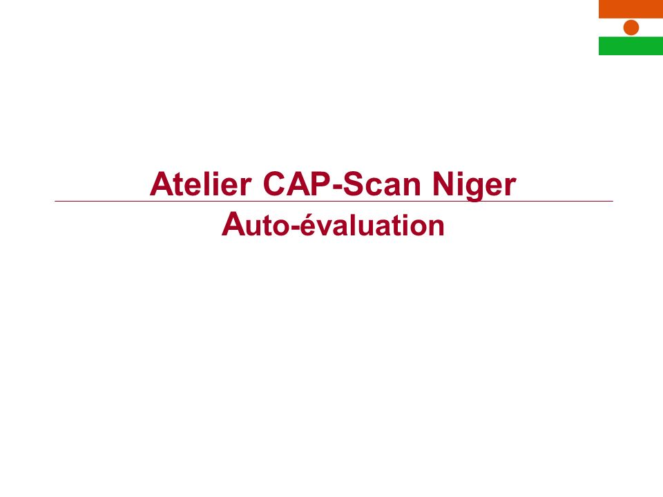 Atelier CAP-Scan Niger A uto-évaluation