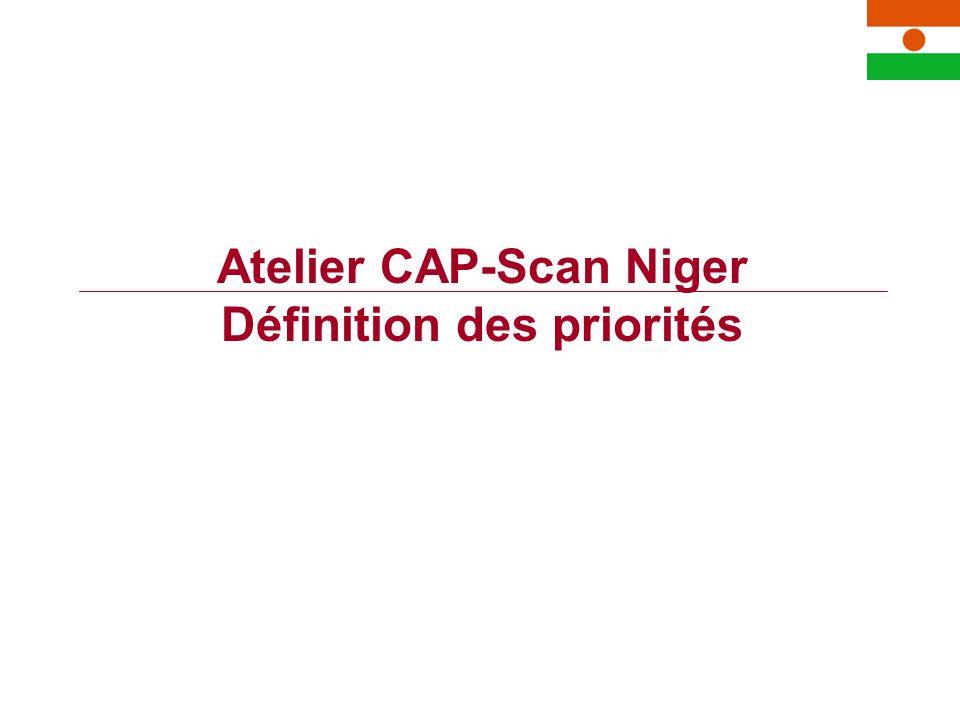 Atelier CAP-Scan Niger Définition des priorités