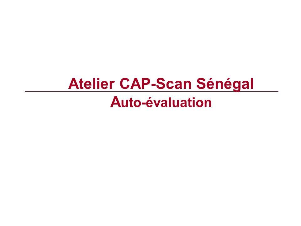 Atelier CAP-Scan Sénégal A uto-évaluation