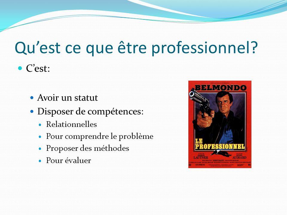 Quest ce que être professionnel? Cest: Avoir un statut Disposer de compétences: Relationnelles Pour comprendre le problème Proposer des méthodes Pour
