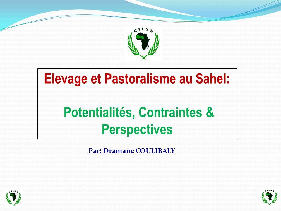 B – Défis (Suite) 4.Accompagner la transformation du pastoralisme transhumant au regard du nouvel environnement: social, économique, institutionnel, etc.