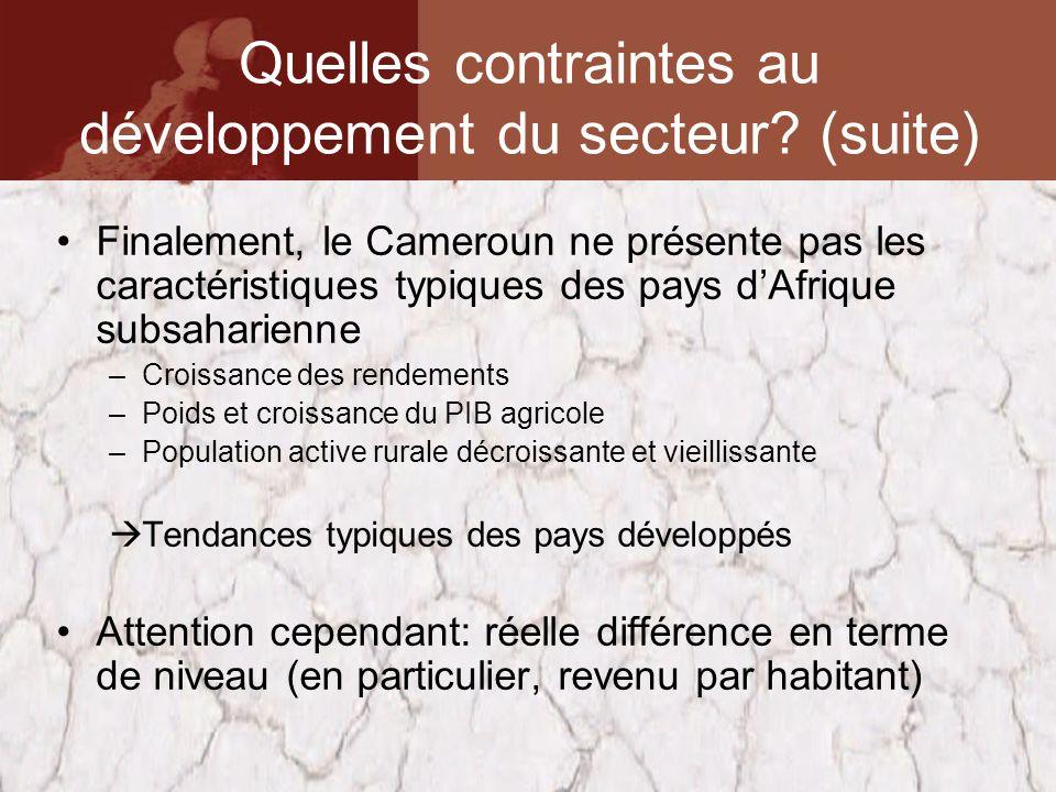 Finalement, le Cameroun ne présente pas les caractéristiques typiques des pays dAfrique subsaharienne –Croissance des rendements –Poids et croissance