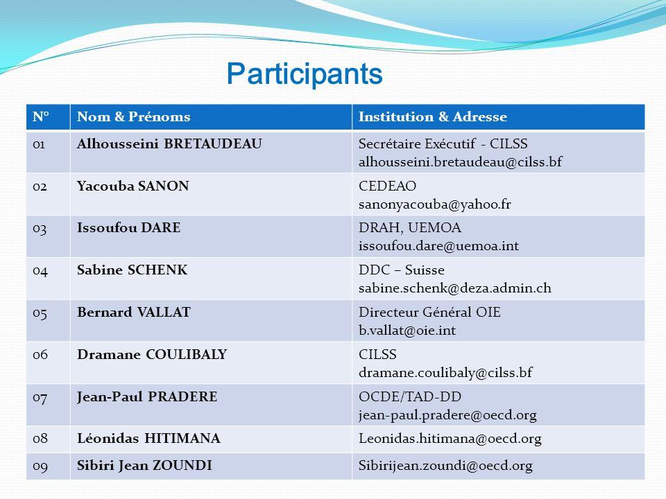 Participants N°Nom & PrénomsInstitution & Adresse 01Alhousseini BRETAUDEAUSecrétaire Exécutif - CILSS alhousseini.bretaudeau@cilss.bf 02Yacouba SANONC
