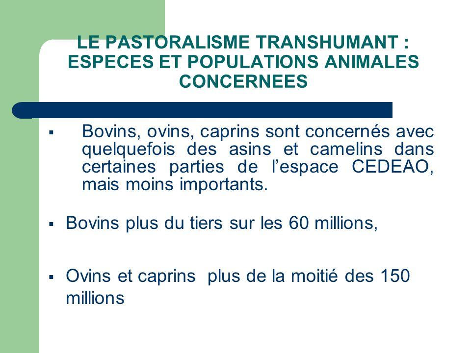 Bovins, ovins, caprins sont concernés avec quelquefois des asins et camelins dans certaines parties de lespace CEDEAO, mais moins importants. Bovins p