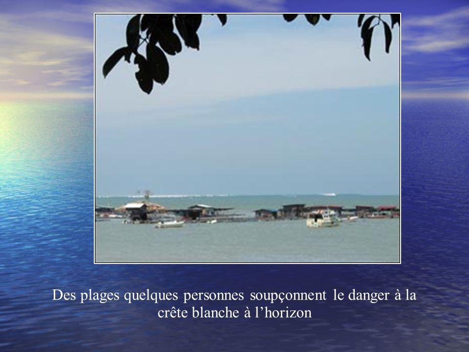 La Zone géographique affectée par le tsunami