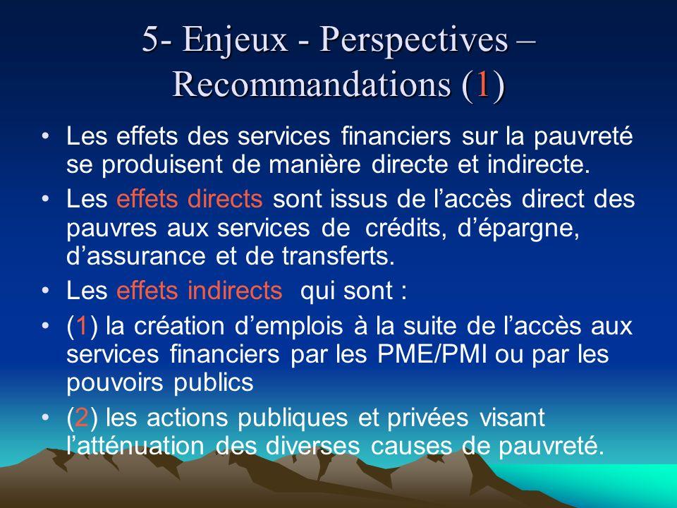 5- Enjeux - Perspectives – Recommandations (1) Les effets des services financiers sur la pauvreté se produisent de manière directe et indirecte.