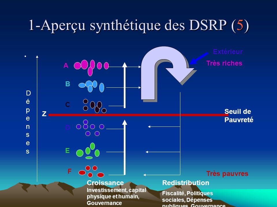 1-Aperçu synthétique des DSRP (5).