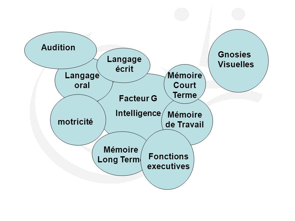 Facteur G Intelligence Langage oral Langage écrit motricité Mémoire Long Terme Mémoire de Travail Gnosies Visuelles Mémoire Court Terme Audition Fonct