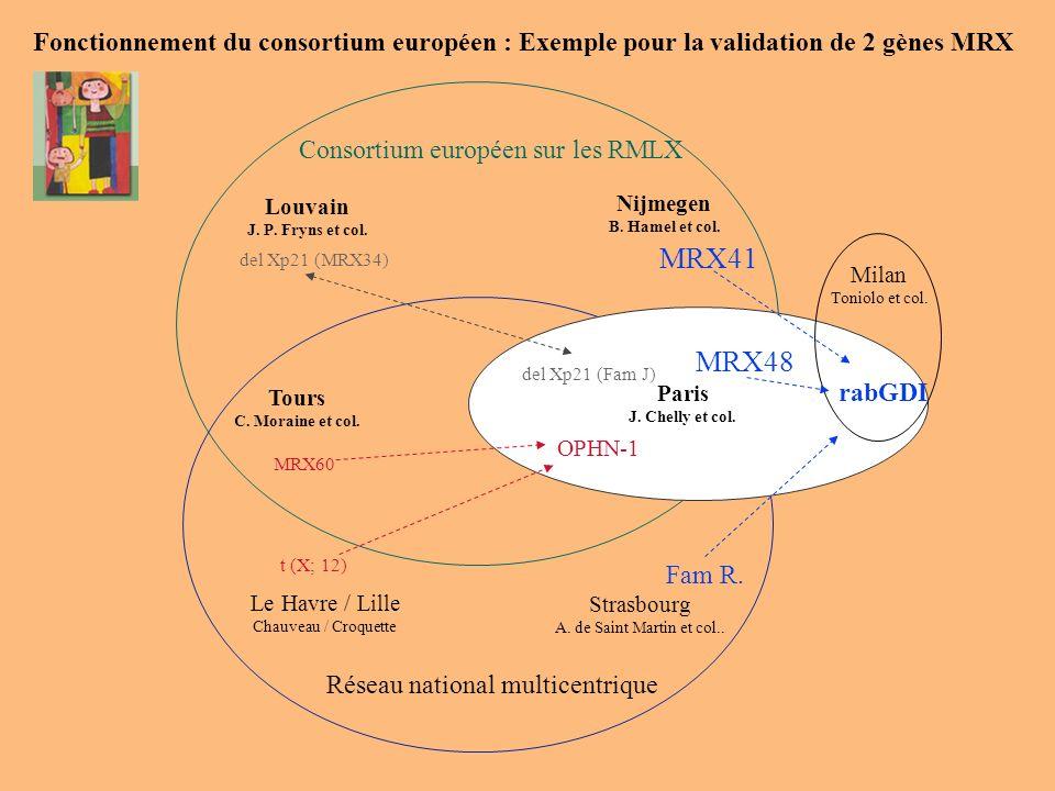 Consortium européen sur les RMLX Louvain J. P. Fryns et col. Nijmegen B. Hamel et col. Tours C. Moraine et col. Milan Toniolo et col. Réseau national