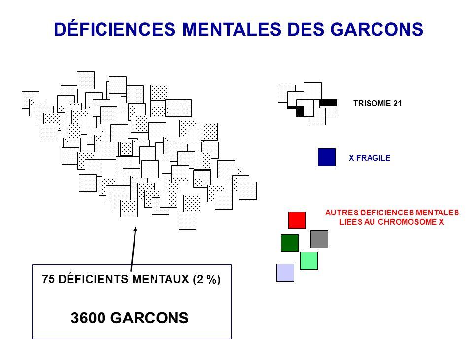 DÉFICIENCES MENTALES DES GARCONS TRISOMIE 21 X FRAGILE AUTRES DEFICIENCES MENTALES LIEES AU CHROMOSOME X 3600 GARCONS 75 DÉFICIENTS MENTAUX (2 %)
