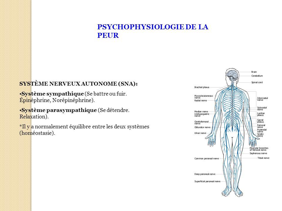 PSYCHOPHYSIOLOGIE DE LA PEUR SYSTÈME NERVEUX AUTONOME (SNA): Système sympathique (Se battre ou fuir. Épinéphrine, Norépinéphrine). Système parasympath