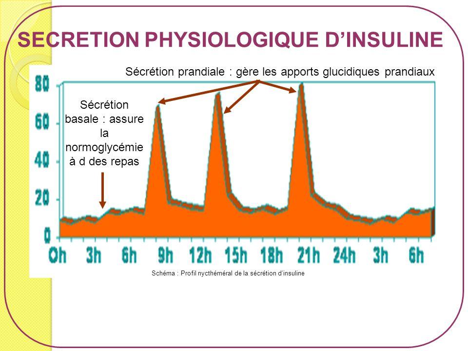 Schéma : Profil nycthéméral de la sécrétion dinsuline SECRETION PHYSIOLOGIQUE DINSULINE Sécrétion basale : assure la normoglycémie à d des repas Sécré