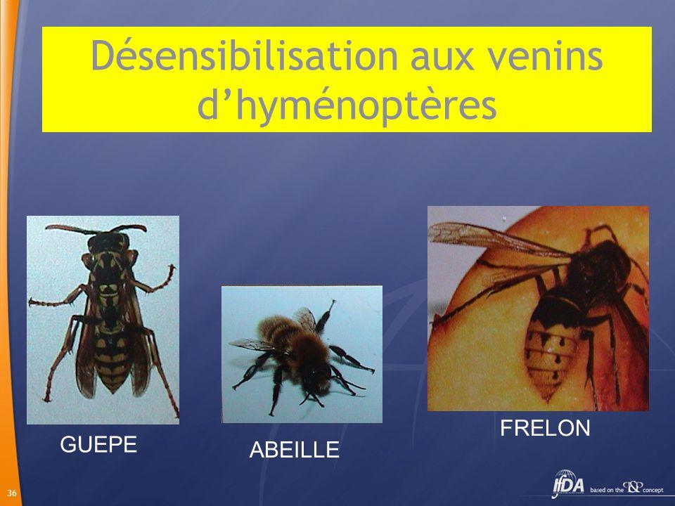 36 GUEPE FRELON ABEILLE Désensibilisation aux venins dhyménoptères