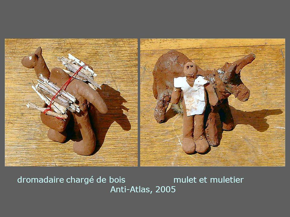 dromadaire chargé de bois mulet et muletier Anti-Atlas, 2005