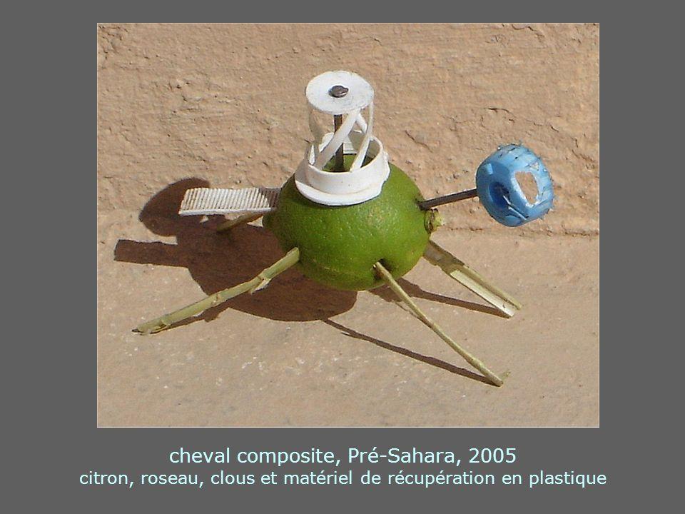 cheval composite, Pré-Sahara, 2005 citron, roseau, clous et matériel de récupération en plastique