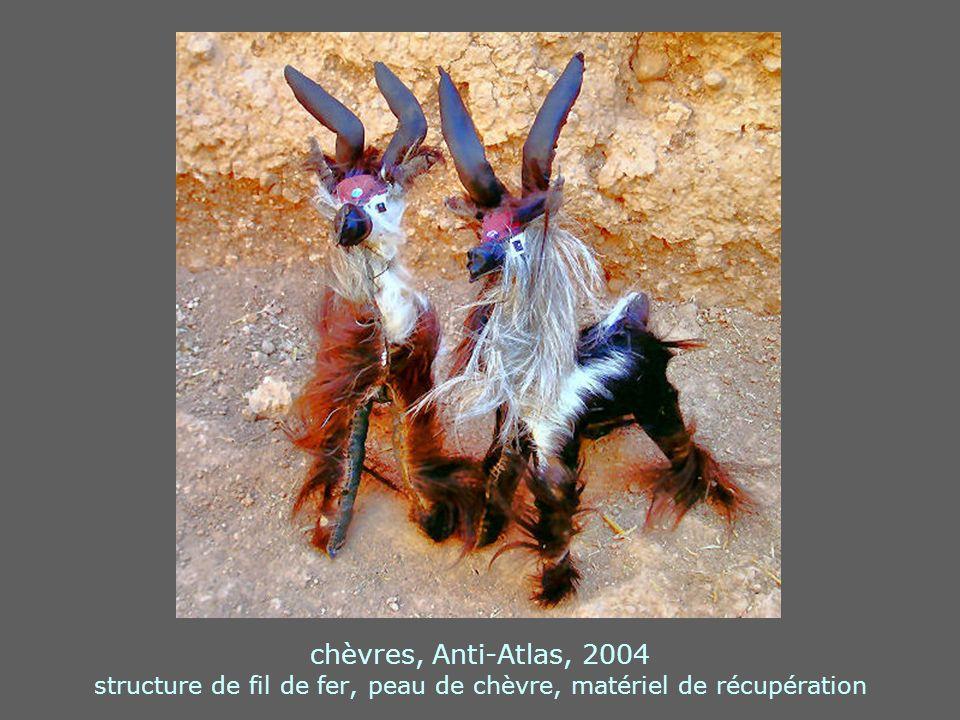 chèvres, Anti-Atlas, 2004 structure de fil de fer, peau de chèvre, matériel de récupération