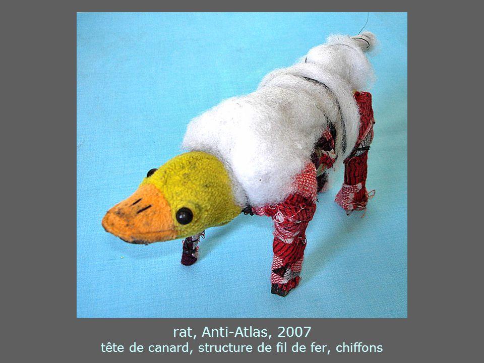 rat, Anti-Atlas, 2007 tête de canard, structure de fil de fer, chiffons
