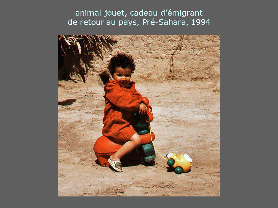 animal-jouet, cadeau démigrant de retour au pays, Pré-Sahara, 1994