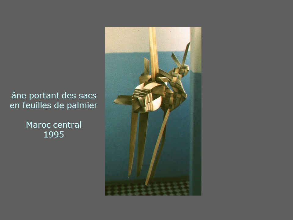 âne portant des sacs en feuilles de palmier Maroc central 1995
