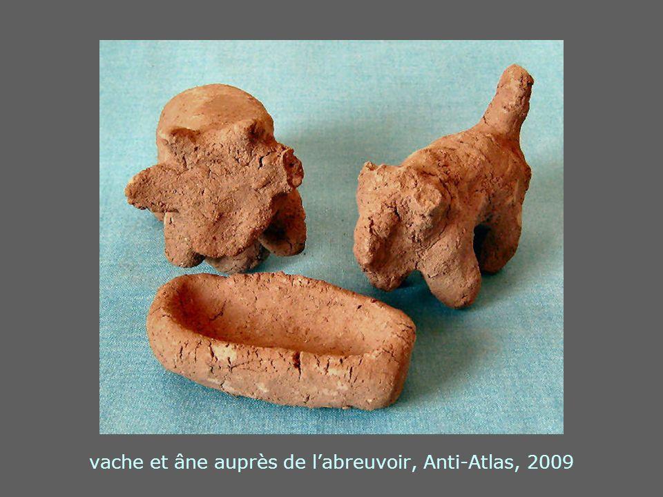 vache et âne auprès de labreuvoir, Anti-Atlas, 2009