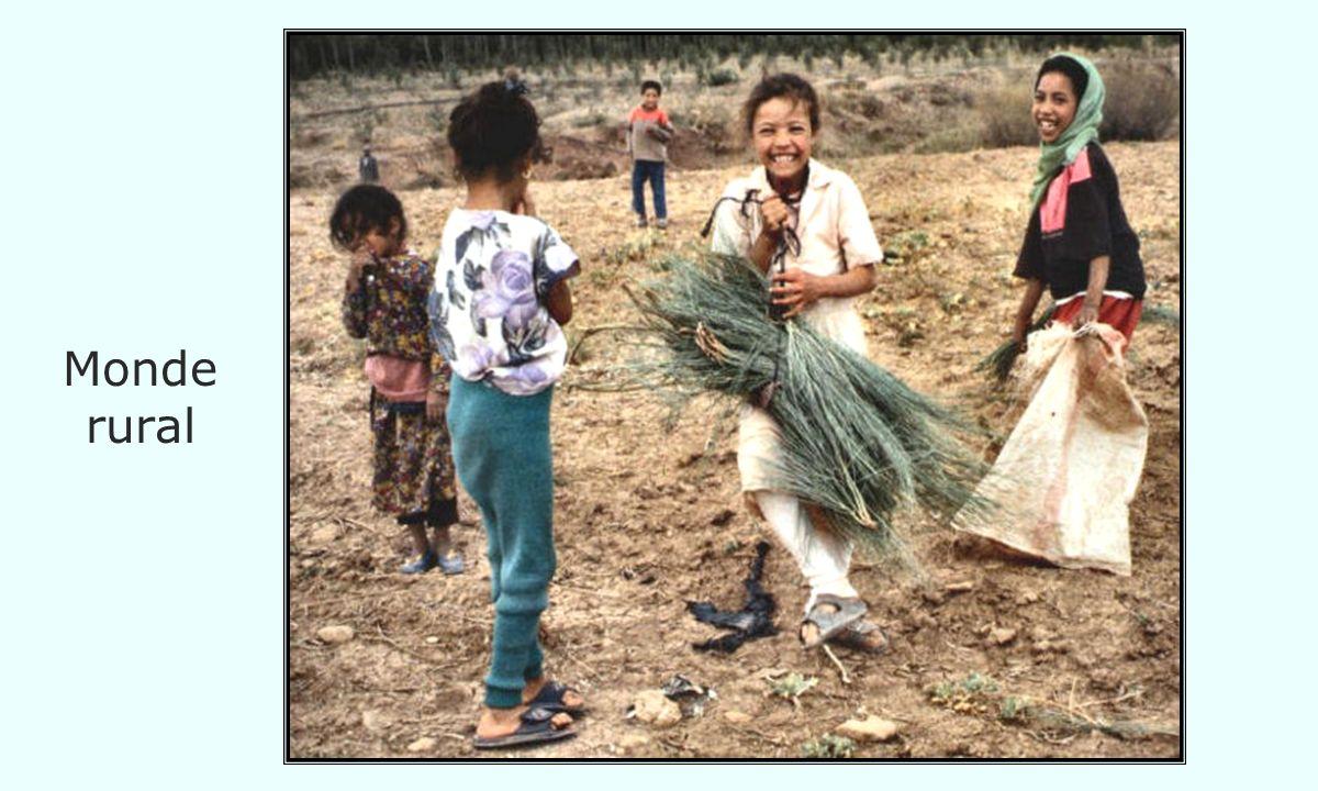 Monde rural