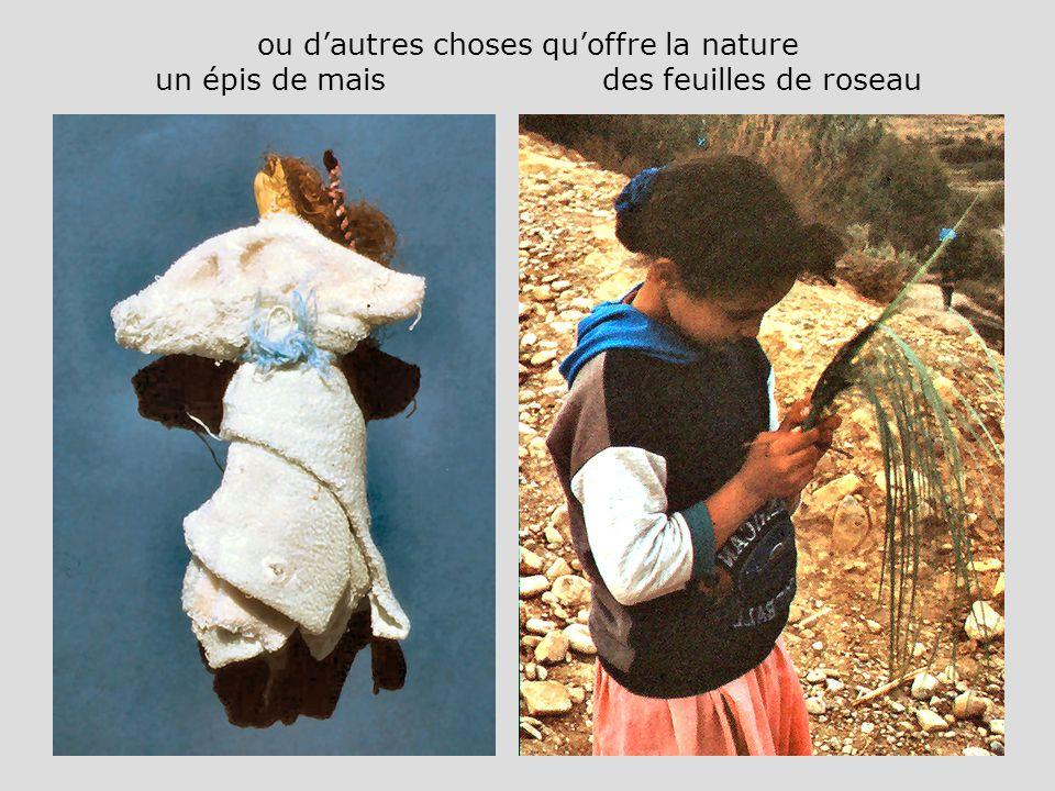 ou dautres choses quoffre la nature un épis de mais des feuilles de roseau